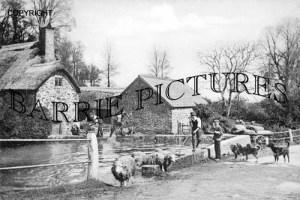 Alcombe, Sheep Dip c1900