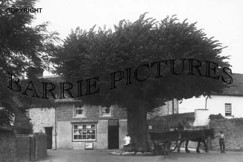 Walton in Gordano, Cross Tree c1920