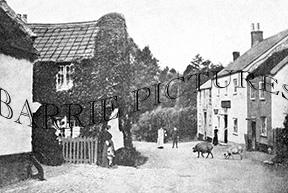 Awliscombe, c1900