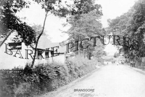 Bransgore, c1910