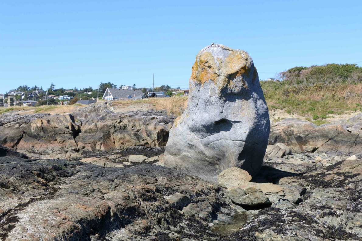 One of two large rocks which were deposited at Harling Point by glaciers as the ice receded at the end of the last Ice Age, 12,000 years ago. A Coast Salish legend says this rock was once a seal hunter who insulted the god Qals, who responded by turning the hunter to stone.