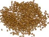 100-150KG/H fish pellet mill