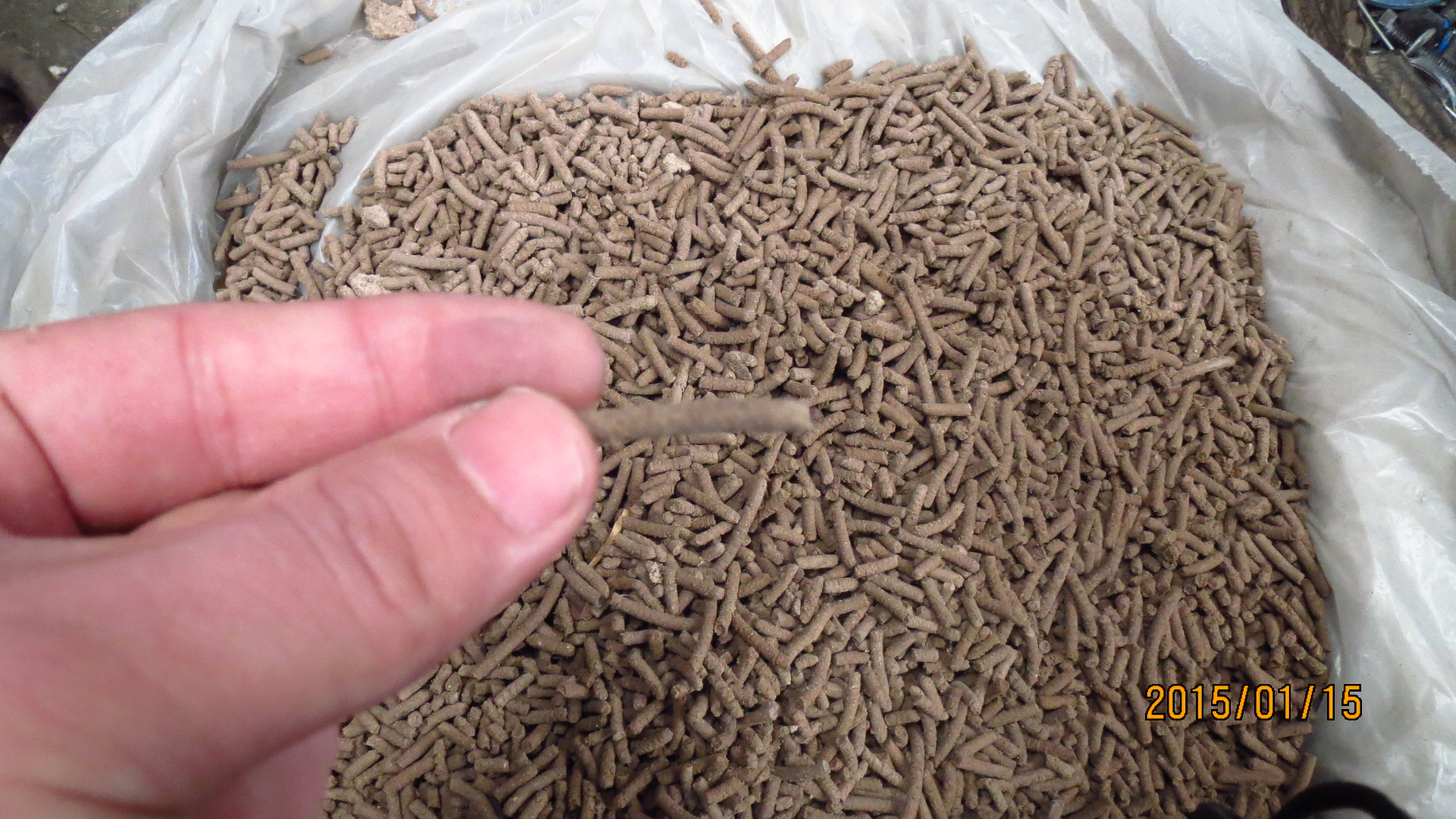chicken feed pellet mill video