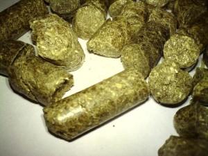 making hay pellets
