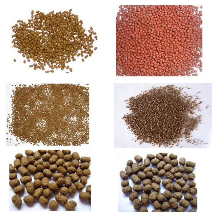 fish feed production line(wet type)