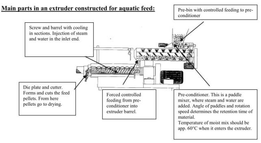 fish feed extrusion process