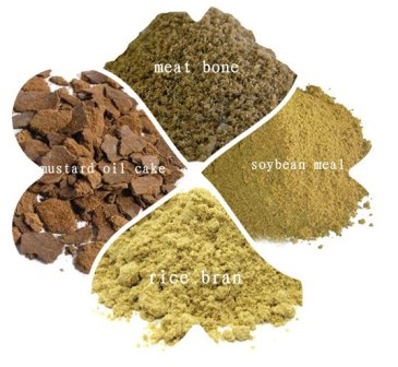 fish feed ingredients formulation