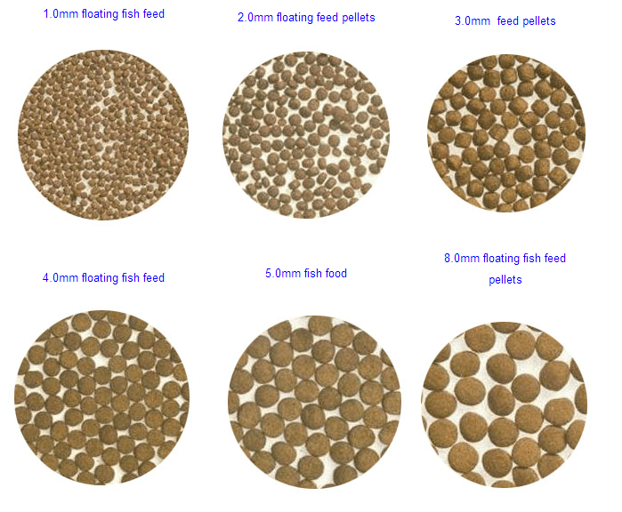 how to make floating fish food pellet