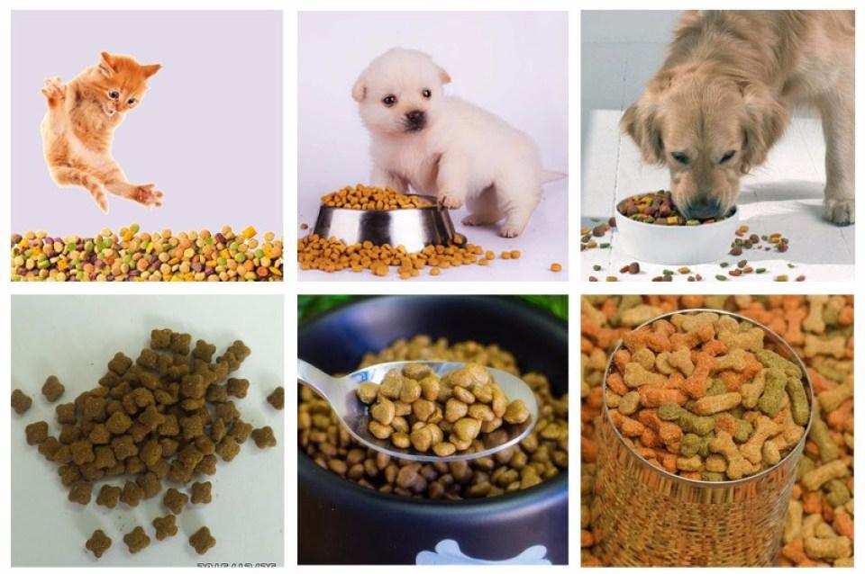 dog food making machine