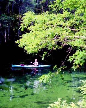 Ecoturismo e turismo de aventura