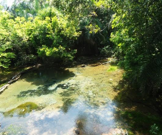 Nascente do Rio Sucuri