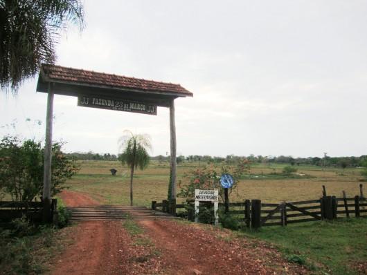 Fazenda 23 de Março - Pantanal - MS