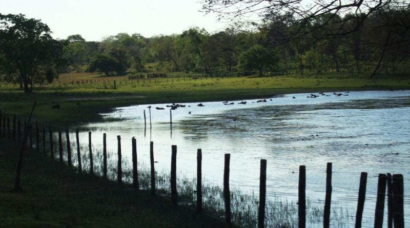 Lago no Pantanal