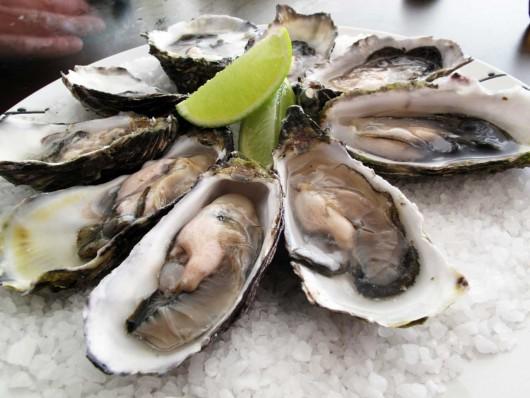 Frutos do mar em Bombinhas