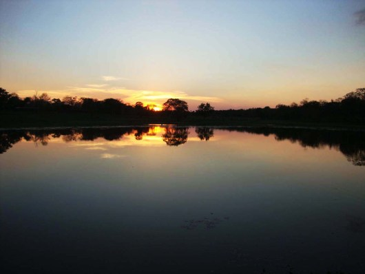 Cidades outono 2019 - Pantanal - MS