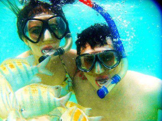 Snorkel nas galés de Maragogi - AL