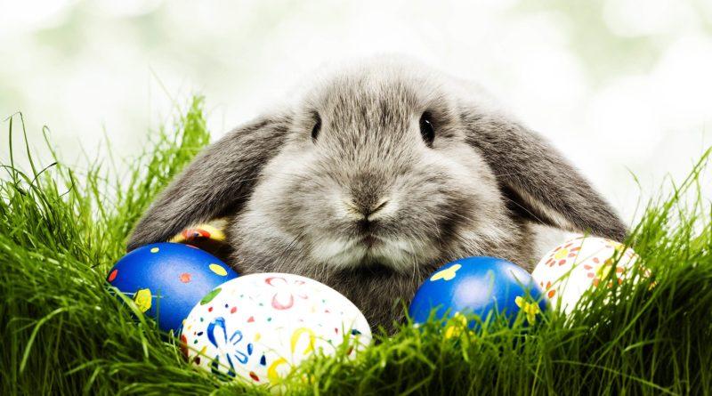 9 lugares para curtir o feriado de Páscoa 2017