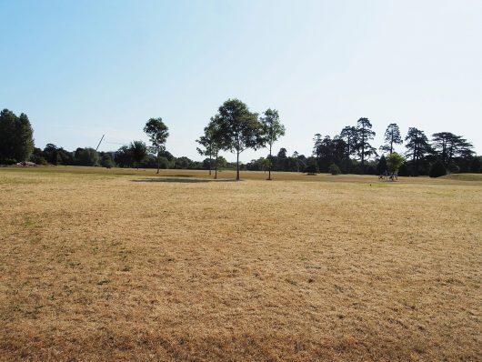 Paisagem - Santry Park