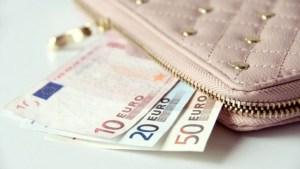 Евро в бежевом кошелке