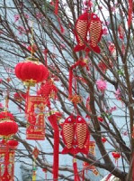 456011 chinese new year   tree - Toques de Prosperidade