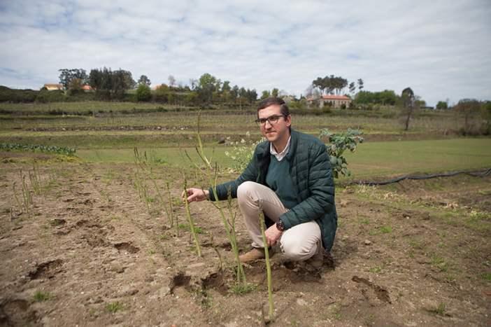 Rui Pinto, diretor da Cooperativa Agrícola de Felgueiras