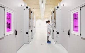 Figura 4 - Vista externa de câmaras Aralab em funcionamento no laboratório ISQ.