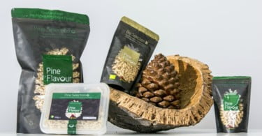 PineFlavour-pinhão-VidaRural