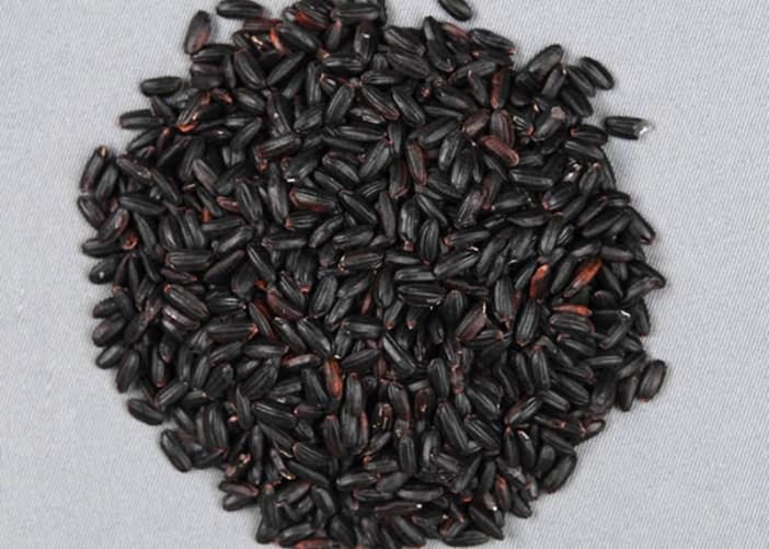 Brasil desenvolve arroz vermelho e preto com maior atividade antioxidante
