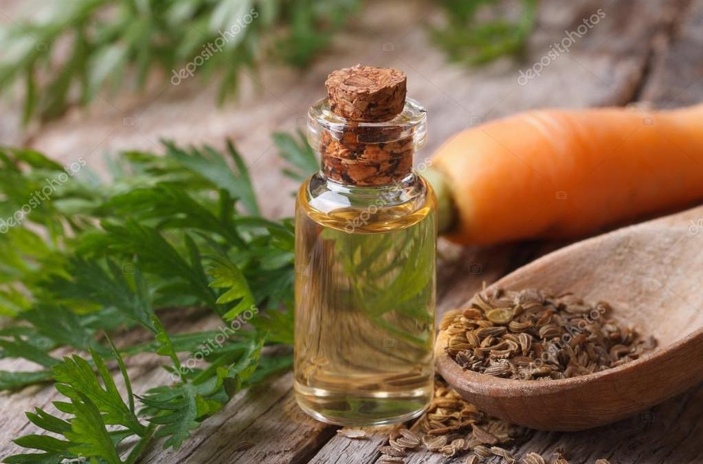 Conoce sobre aceites esenciales