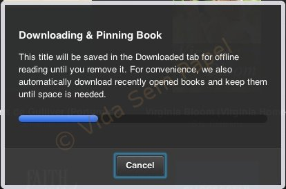 Kindle Cloud Reader 09