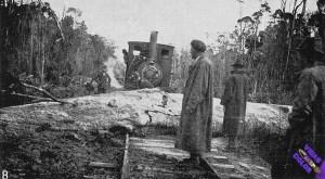 Fallen_tree_blocks_the_Marrawah_tram._J_L_Moore_photo_15985042352_byn