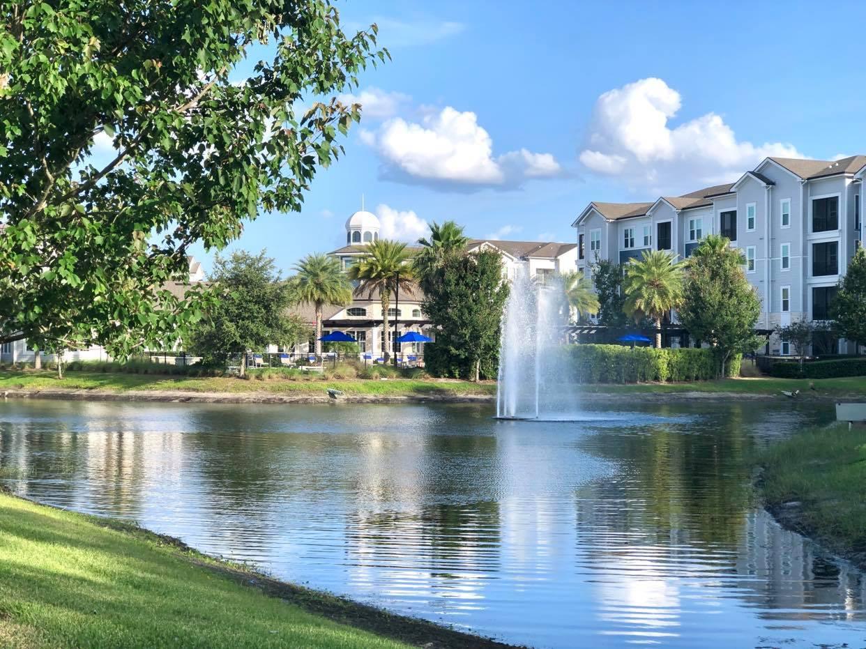 A Procura de casa em Tampa Bay