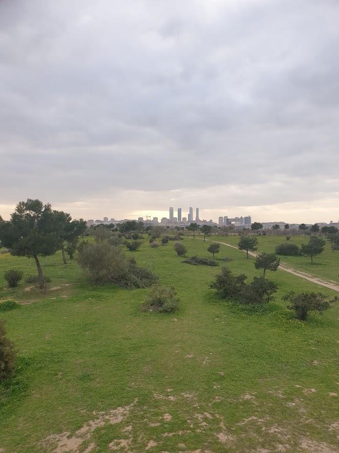 Os melhores parques de Madrid