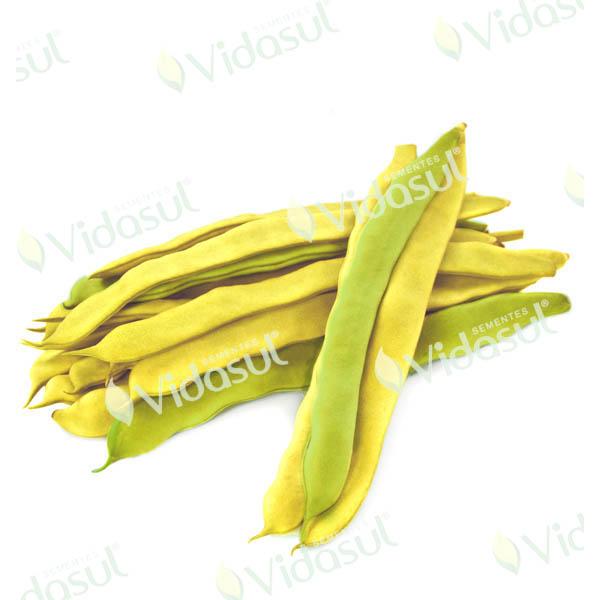 Feijão de Vagem Amarelo Alto (Brasileirinho)