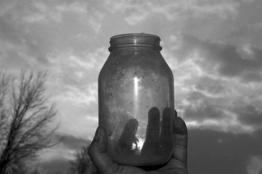 """I'm nothing, if not"": An Anecdote of a Jar"