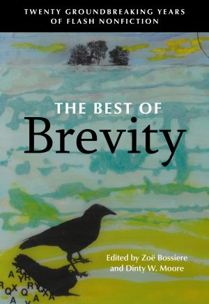 The Best of BREVITY: A Group Interview