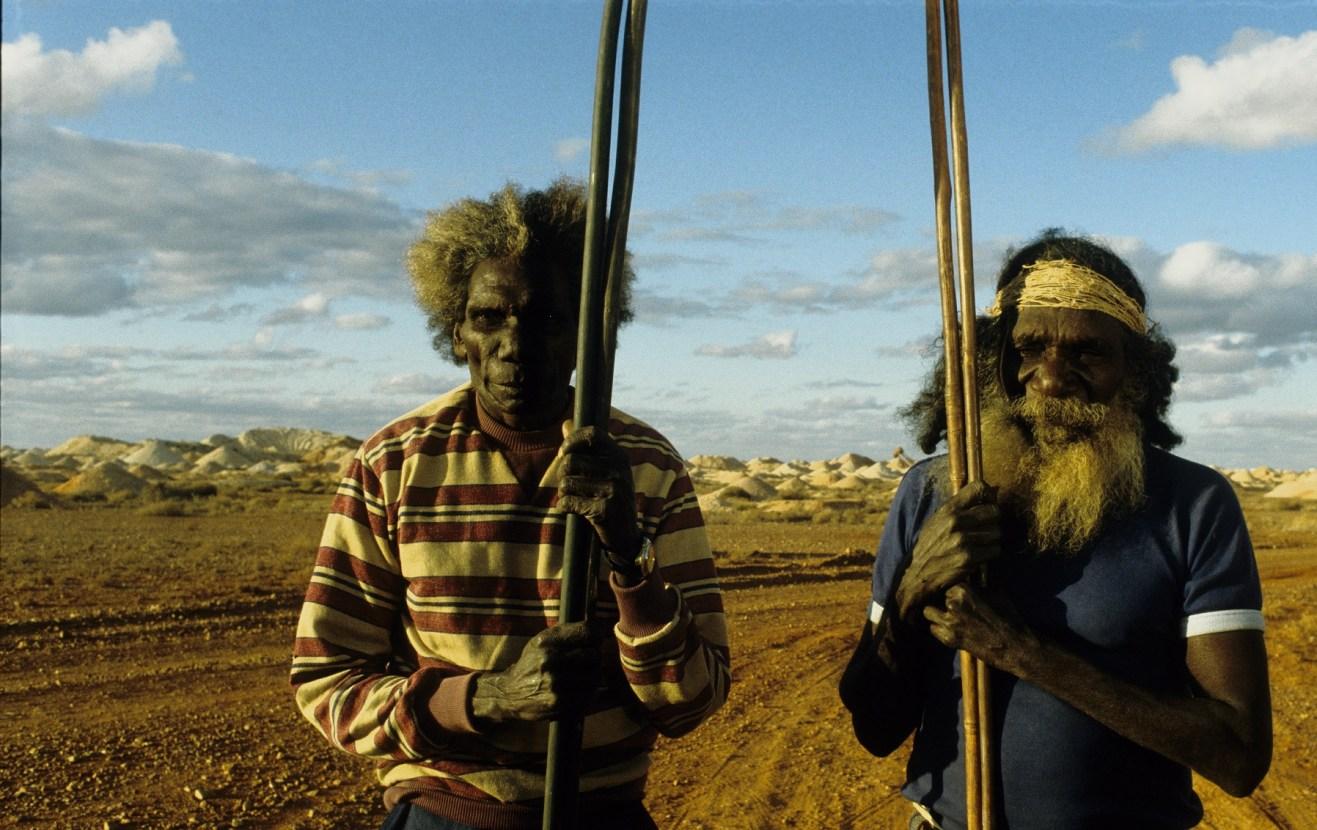 Le Pays où rêvent les fourmis vertes – Werner Herzog