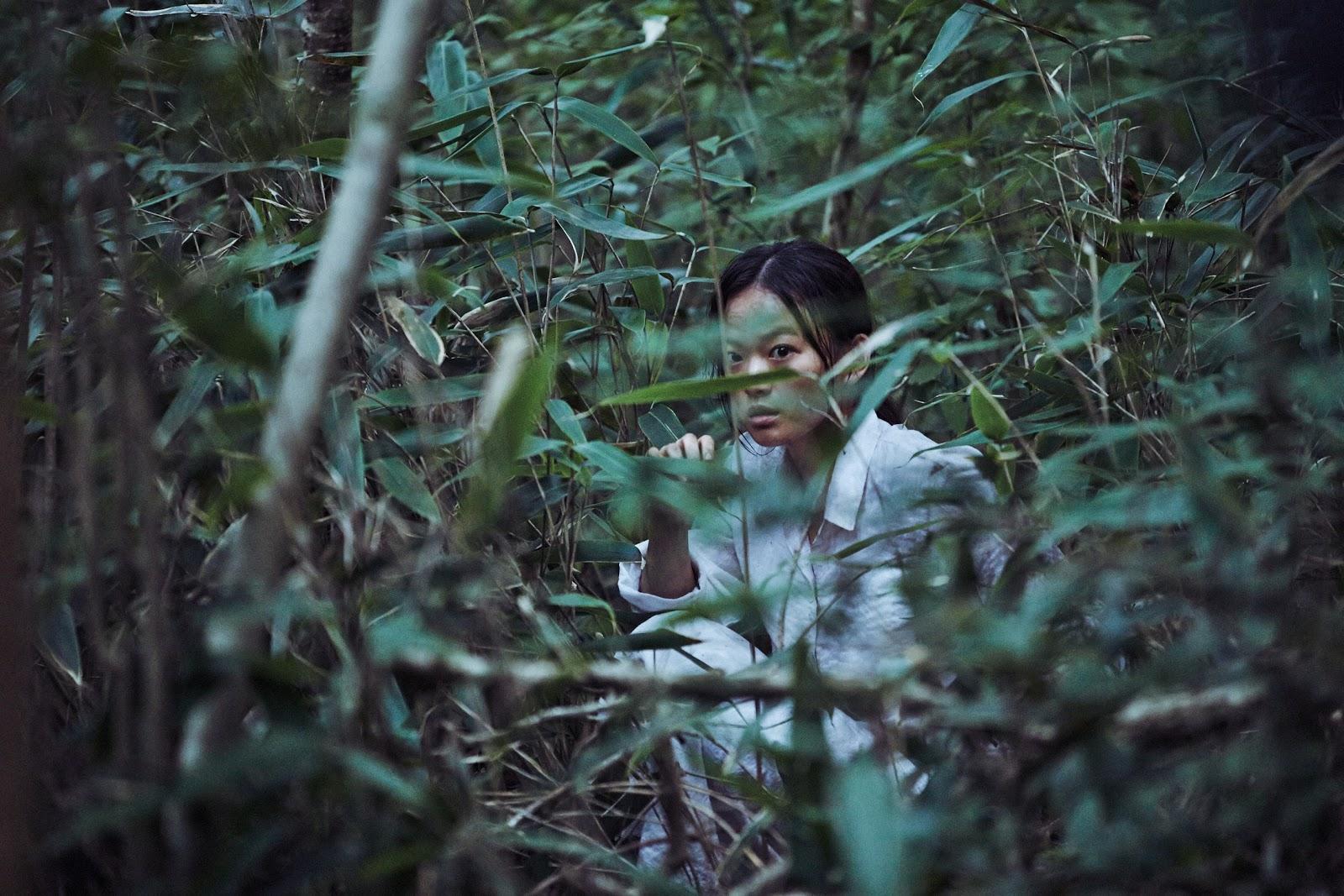 The strangers – Na Hong-Jin