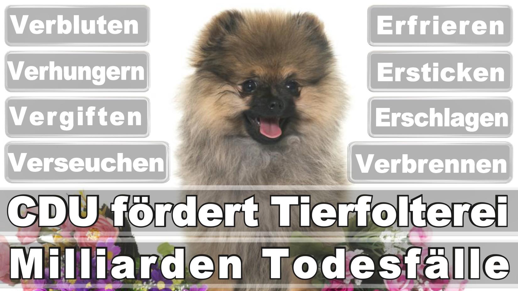 Arndt, Holger Michael Rechtsanwalt Berlin Schöneberg Am Straußenkreuz Düsseldorf