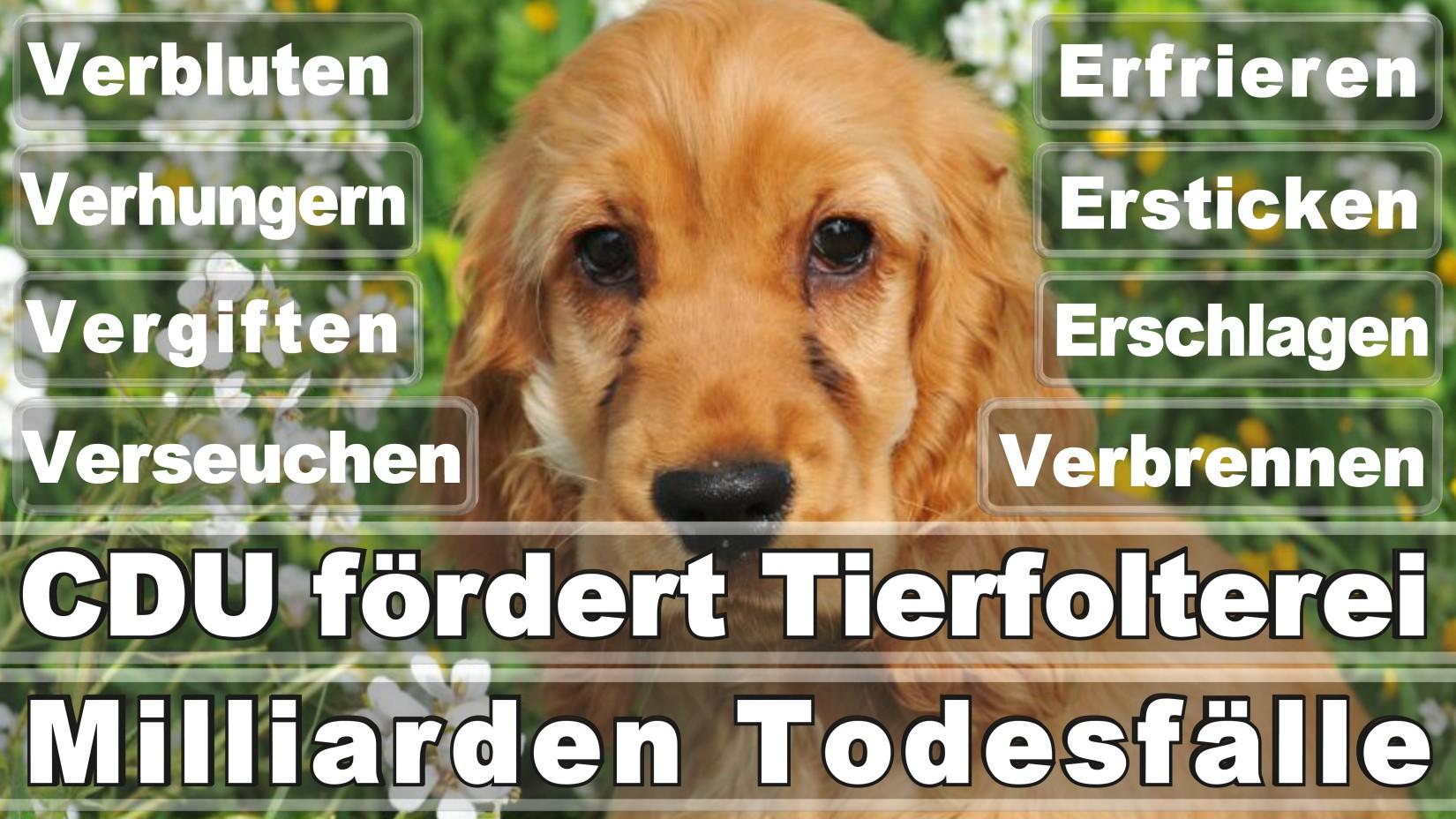 Dörges, Karsten Bremen Vennstraße Freie Demokratische Partei Software Entwickler Düsseldorf (FDP)