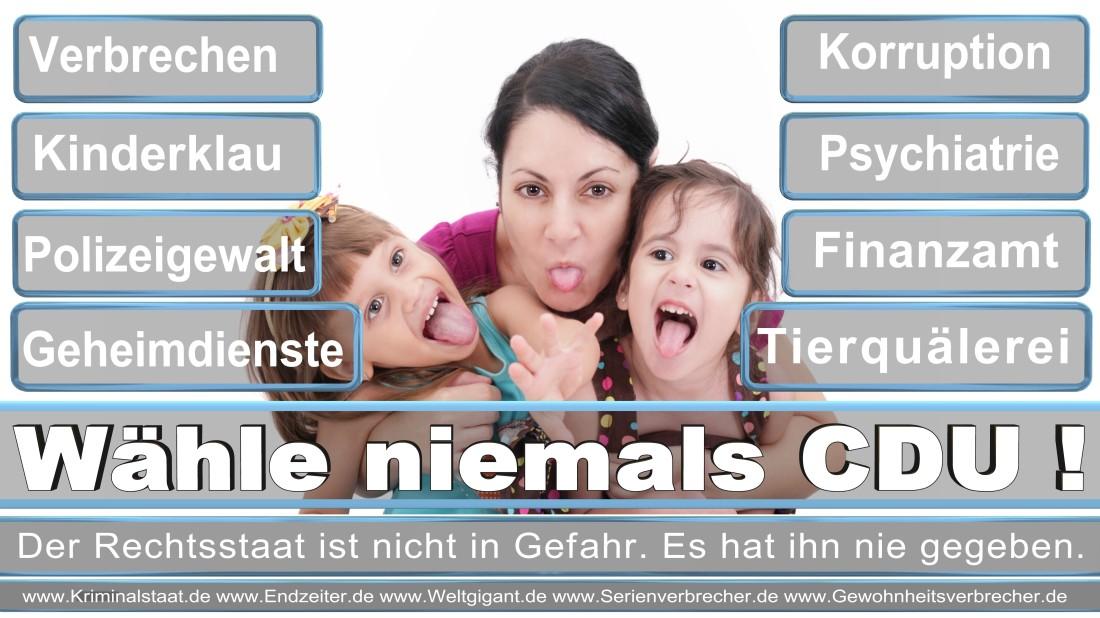 Dr. Dehn, Winny Medienwissenschaftlerin Berlin Klever Straße Piratenpartei Deutschland (PIRATEN Düsseldorf )