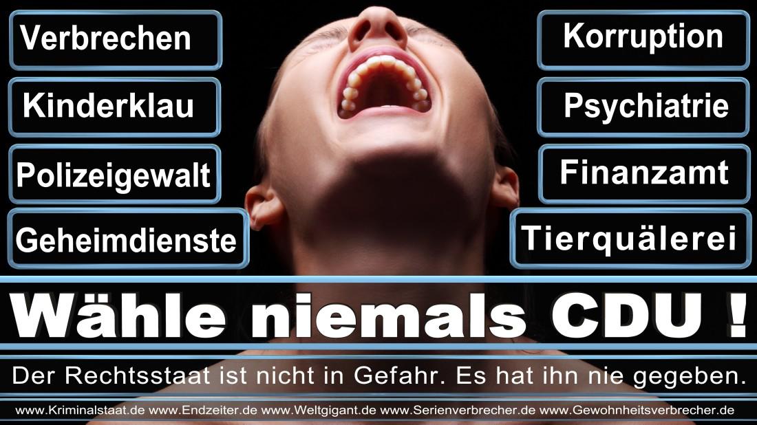 Dr. Heimlich, Gerd Marketing Manager Mönchengladbach Klever Straße Alternative Für Deutschland (AfD) Düsseldorf