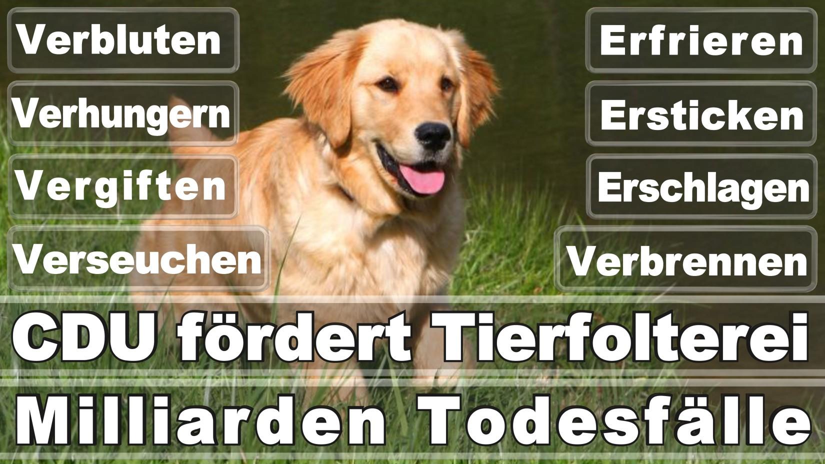 Gardenier, Eckhard Volker Düsseldorf Am Kapeller Feld Christlich Demokratische Union Architekt Düsseldorf Deutschlands (CDU)