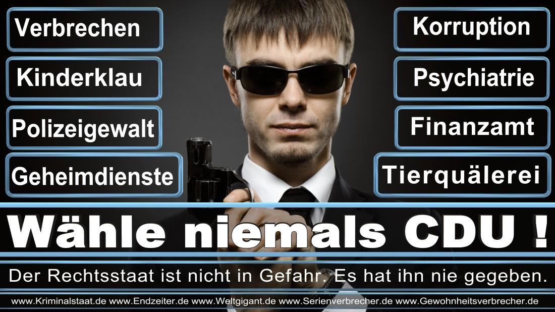 Kreutz, Sebastian Gamedesigner Mönchengladbach Hügelstraße Piratenpartei Deutschland (PIRATEN Düsseldorf )