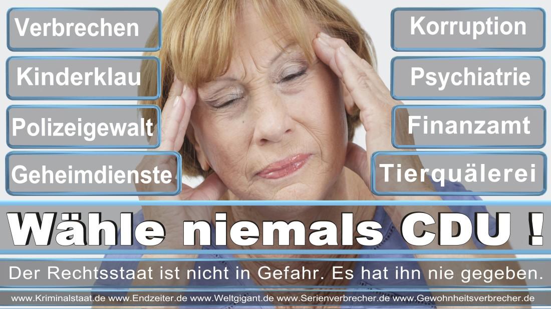 Lemmer, Wolfgang Selbstständig Düsseldorf Amselstraße Unabhängige Wählergemeinschaft Düsseldorf Für Düsseldorf (FREIE WÄHLER)