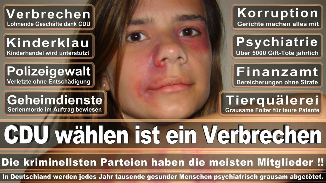 Mayer, Clemens Maximilian Student Düsseldorf Am Haferkamp Piratenpartei Deutschland (PIRATEN Düsseldorf )