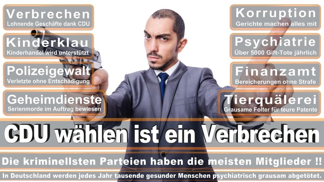 Reichert, Christoph Harald Künstler Frankfurt Am Main Heinrichstraße Piratenpartei Deutschland (PIRATEN Düsseldorf )