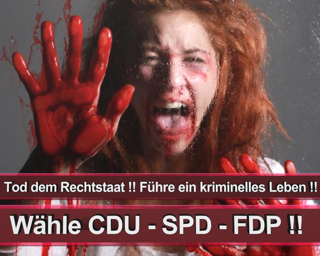 Scholtz, Johann Hamburg Sohnstraße Freie Demokratische Partei Geigenbaumeister Düsseldorf (FDP)