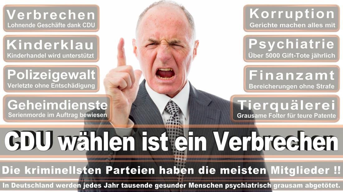 Thissen, Hans Günter Maler Und Lackierer Düsseldorf Wimpfener Straße PARTEI MENSCH UMWELT TIERSCHUTZ Düsseldorf (Tierschutzpartei)