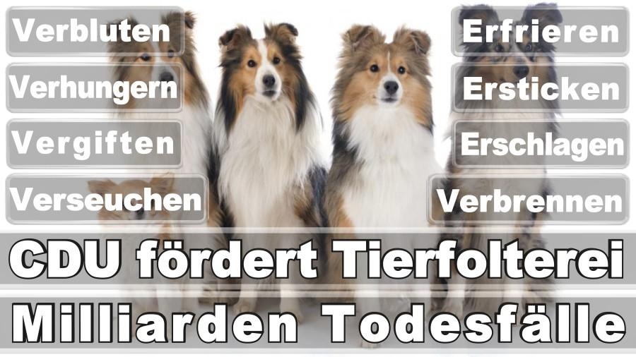 Warden, Axel Düsseldorf Leostraße Sozialdemokratische Partei Ingenieur Düsseldorf Deutschlands (SPD)